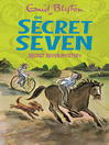 Mystery (eBook): Secret Seven Series, Book 9